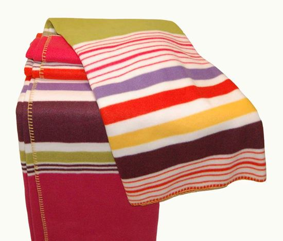 Picture of Par Cobertor Polar 160x240 Riscas Multicor