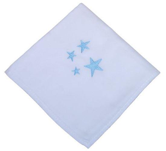 Picture of Cj6 Fraldas Estrelas Azul Alg.