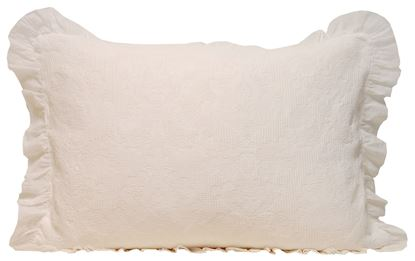Picture of Almofada SETEAIS Natural 50x70 c/Voile Alg.